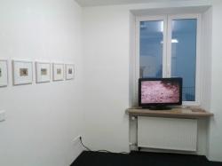 li. Sonja Allgaier | re. Bianaca Kennedy/Felix Kraus/The Swan Collective