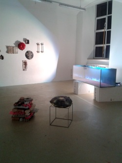 Carmen Schaub | Diplom 2015 AdbK